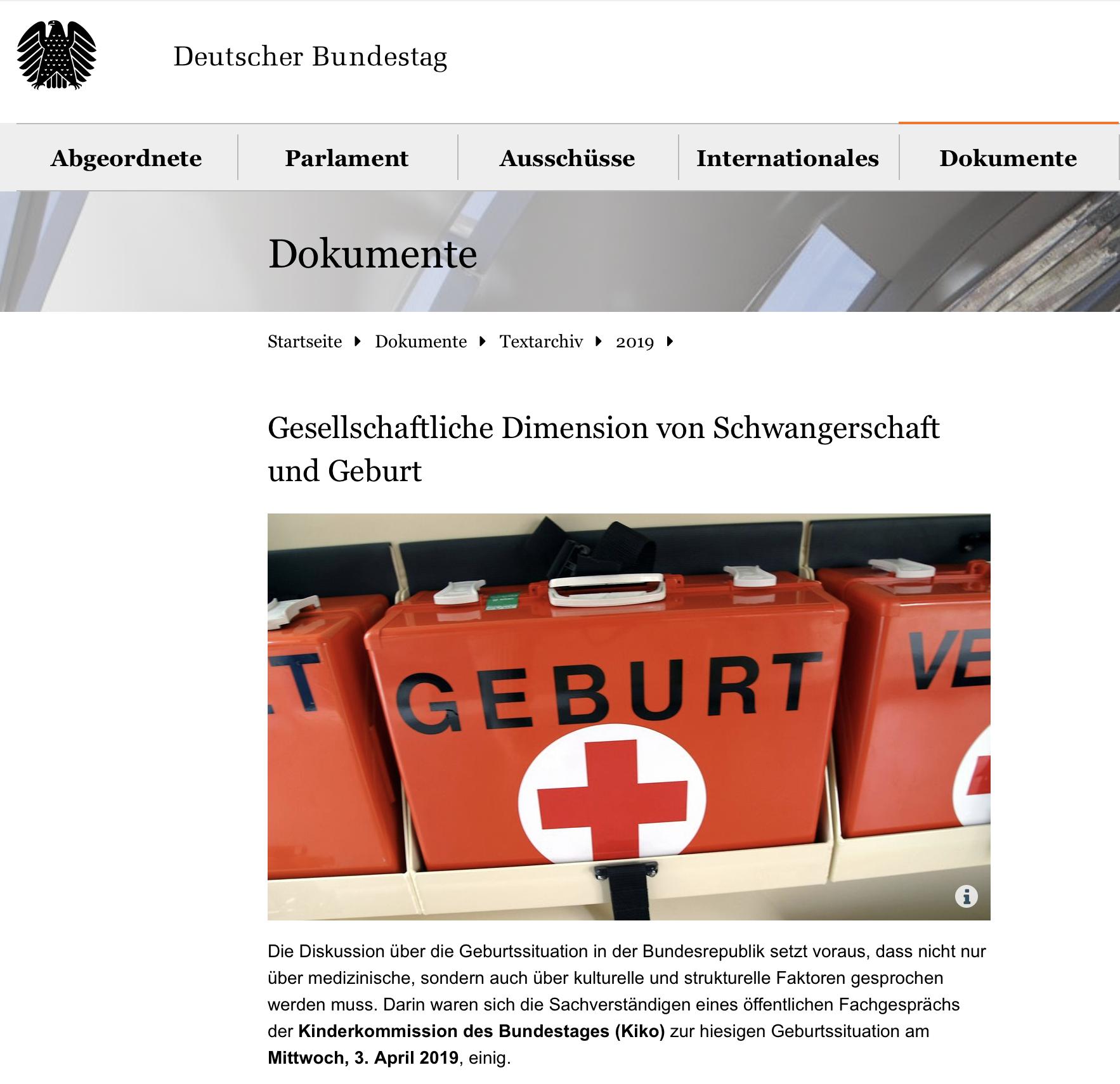 Lesetip: Gesellschaftliche Dimension von Schwangerschaft und Geburt (Deutscher Bundestag)